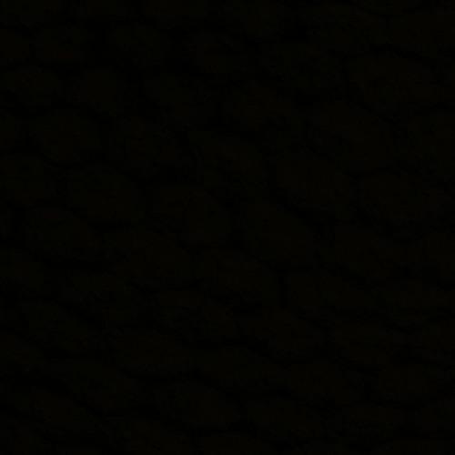 Zorz's avatar