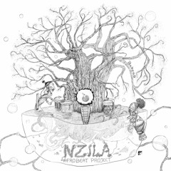 Nzila Afrobeat Project