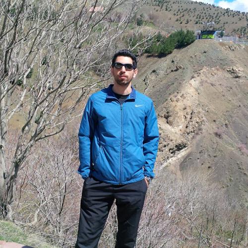 Ehsan Hamnam's avatar