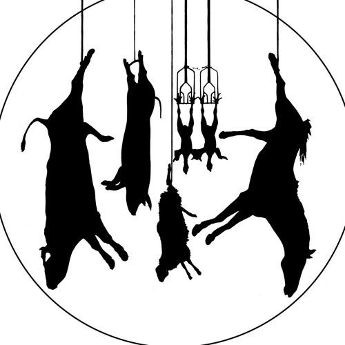 Dom Goda Djuren's avatar