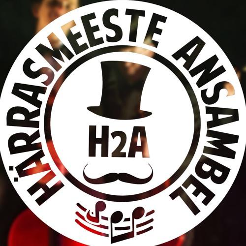 Härrasmeeste Ansambel's avatar