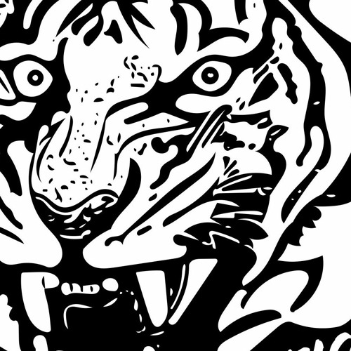 TIGER TAPES's avatar