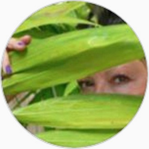 Wackyy jackie Zamboni Science-Alfonsi-Cicconi's avatar