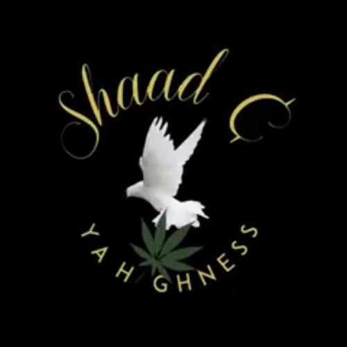 Shaad Cya Highness's avatar