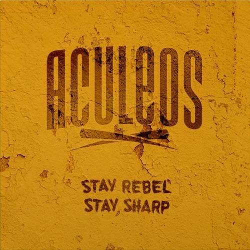 Aculeos's avatar