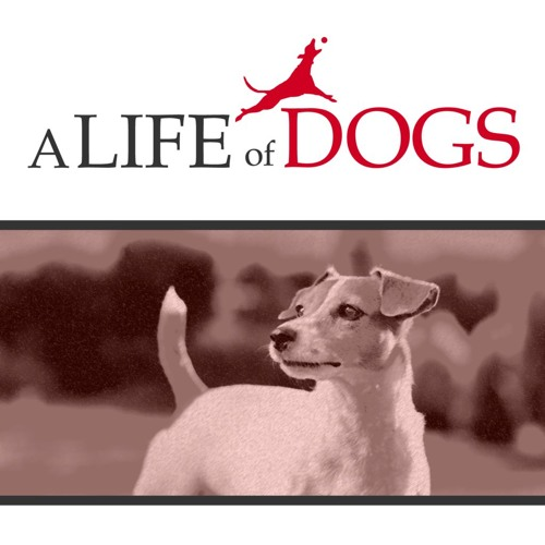 a Life of Dogs's avatar
