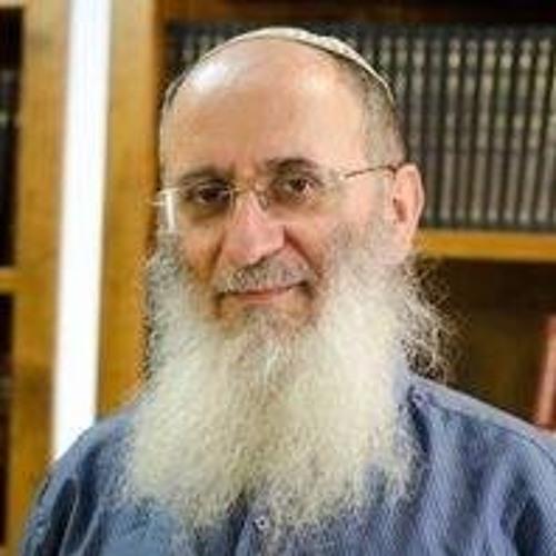 הרב שרקי - שיעור יומי קצר's avatar