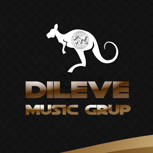 Dileve Music Grup's avatar
