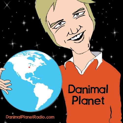 Danimal Planet Radio's avatar
