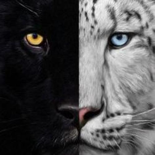 meowunicorn's avatar
