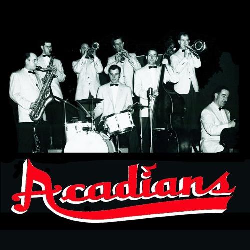 The Acadians's avatar