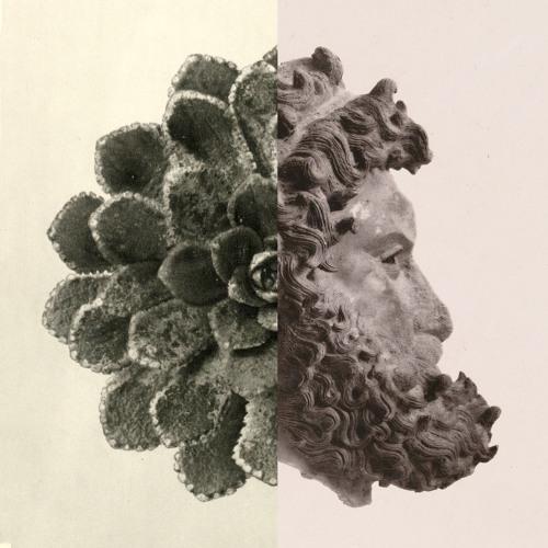 kylevanblerk's avatar