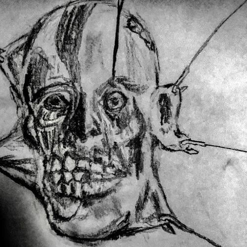 Anonymous Prime's avatar