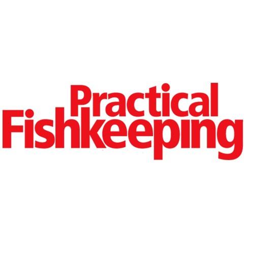 PracticalFishkeepingMag's avatar