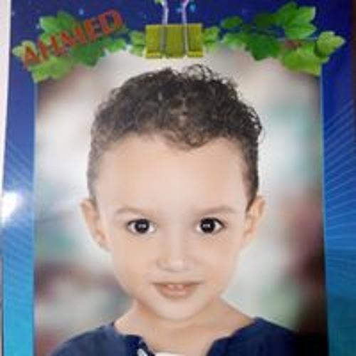 Mardi Abd Elaaty Hassan's avatar