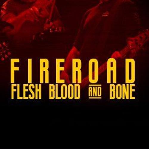 FIREROAD's avatar