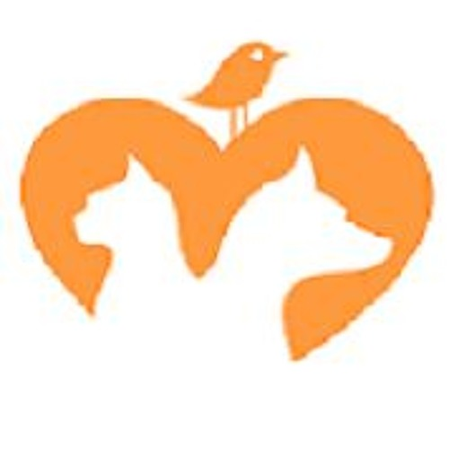 ilovepets.co's avatar