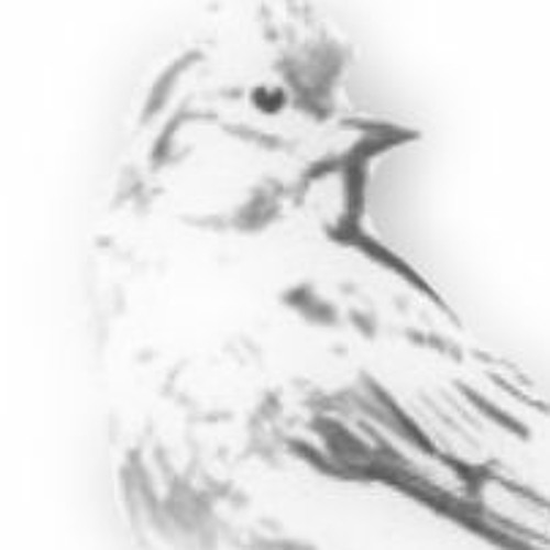 Mezcel's avatar