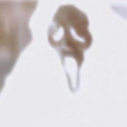DEVDFVCE's avatar