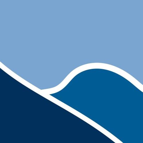 Blue Ridge Wealth Planners's avatar