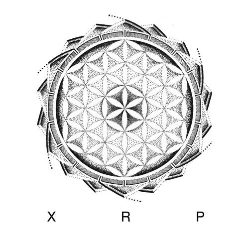 X R P's avatar