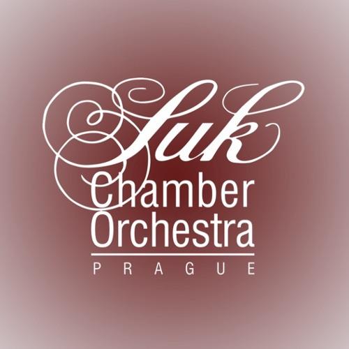 Suk Chamber Orchestra's avatar