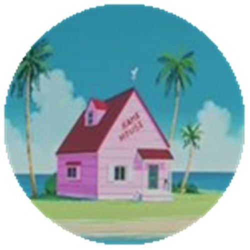 KAMEhameHOUSE's avatar