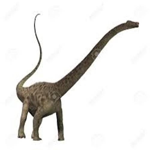 Diplodocus's avatar