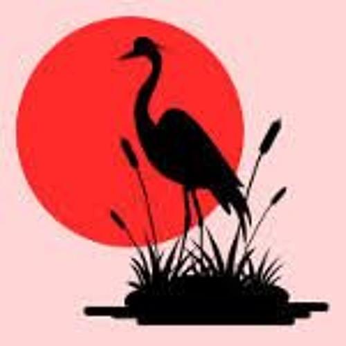 Dario Sattor's avatar