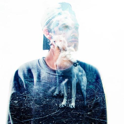 BLUE HEALER's avatar