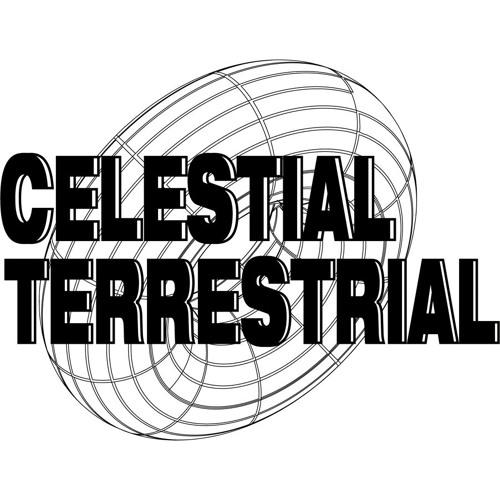 Celestial Terrestrial's avatar