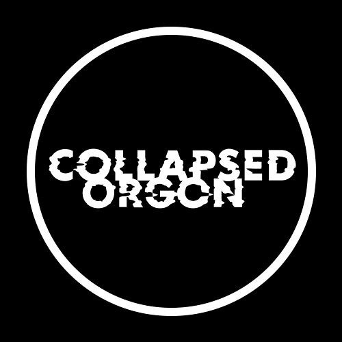 Collapsed Orgon's avatar