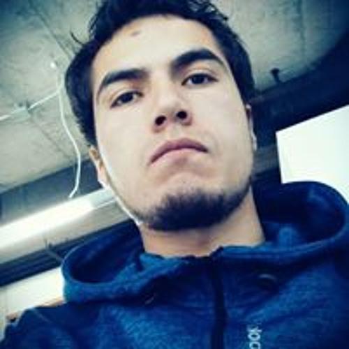 Nicolas Fredes Veliz's avatar