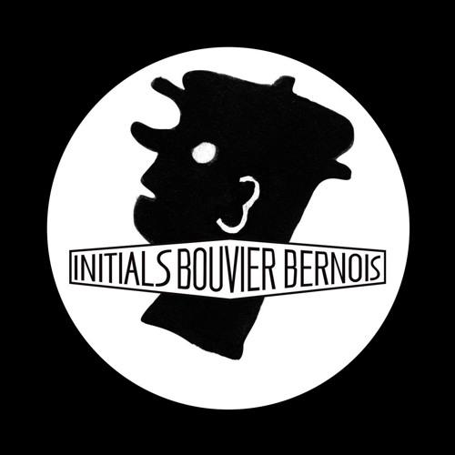 Initials Bouvier Bernois's avatar