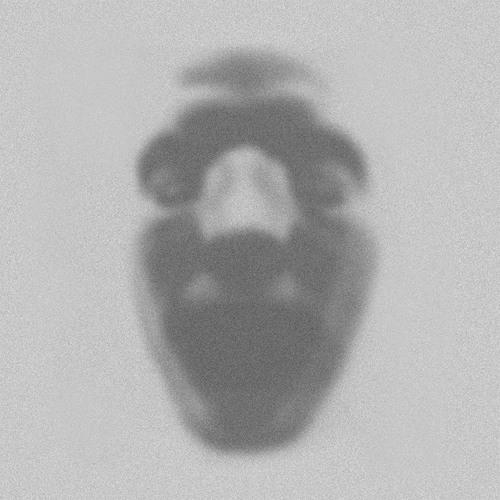 Guido Flichman's avatar