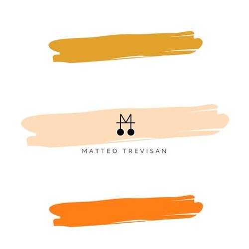 Matteo Trevisan's avatar