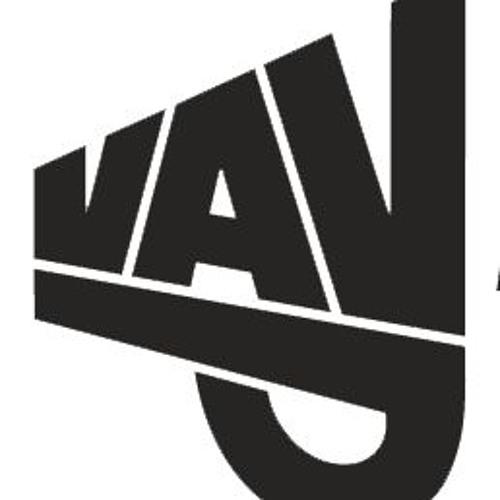 Virginia Anti-Violence Project (VAVP)'s avatar