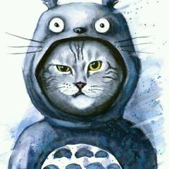 Totoro ☯