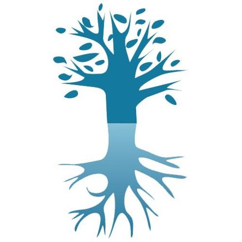 Kabbala Akademie's avatar