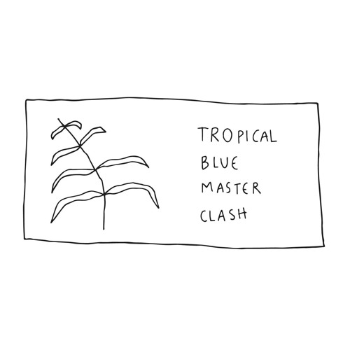 Tropical Blue Master Clash's avatar