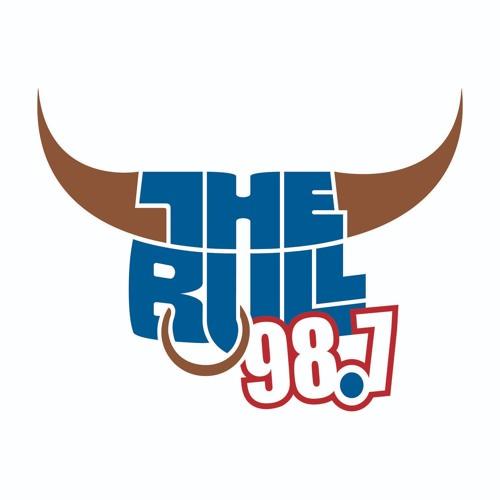 987TheBull's avatar