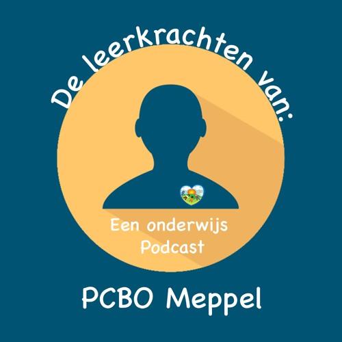 PCBO meppel's avatar