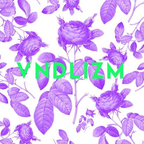 vndlizm's avatar