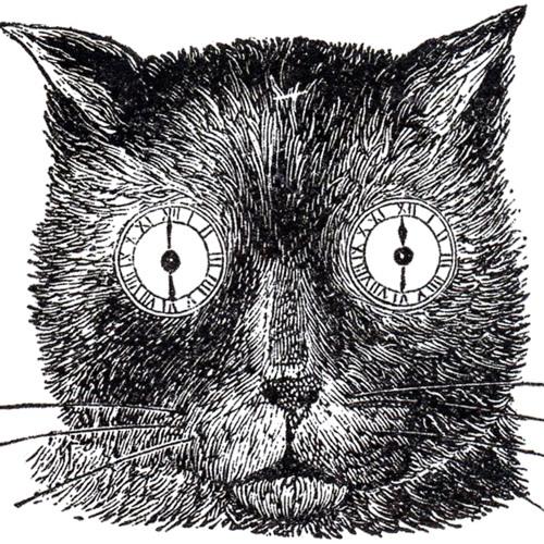 David M. Gordon's avatar