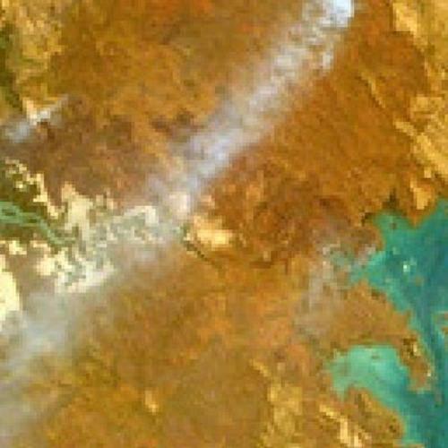 Earth Theme's avatar