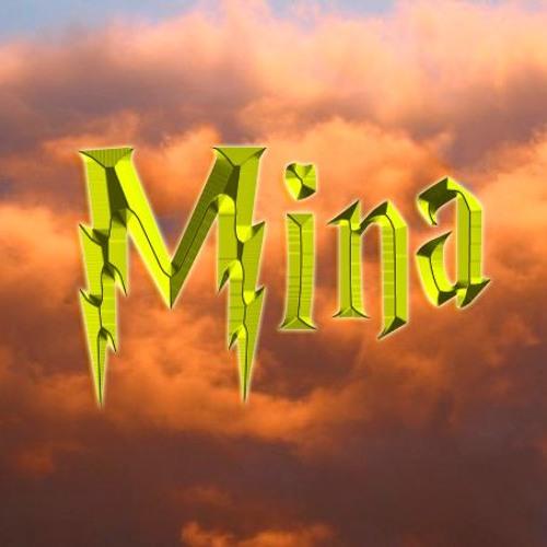 Mina Kamal's avatar