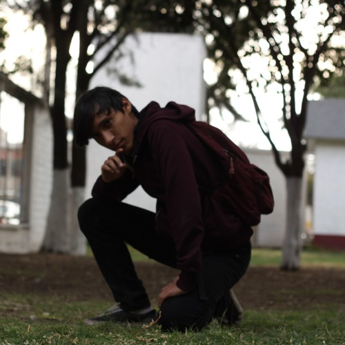 Luis Silva's avatar