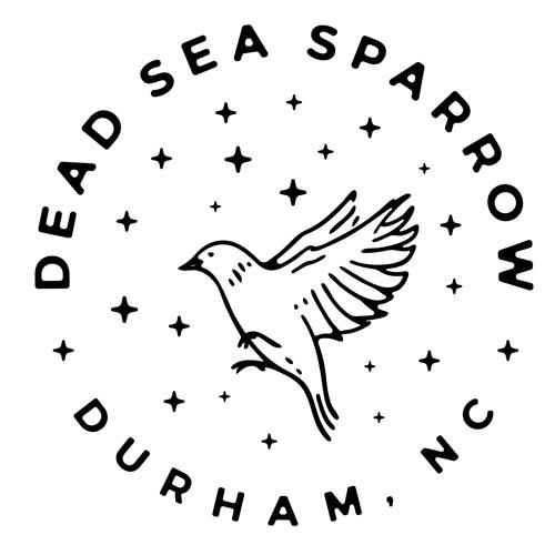 Dead Sea Sparrow's avatar
