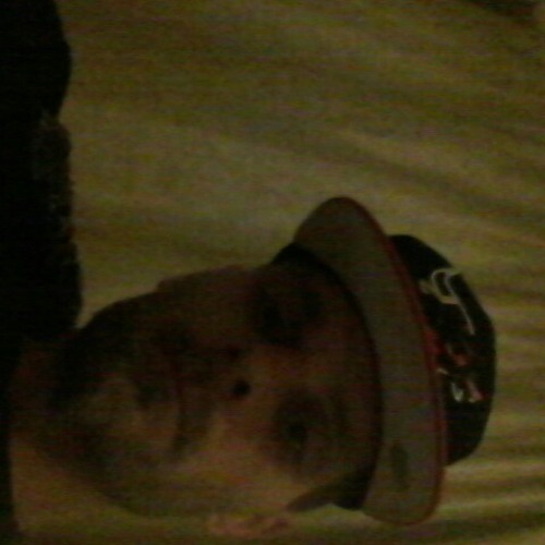 User 808980001's avatar