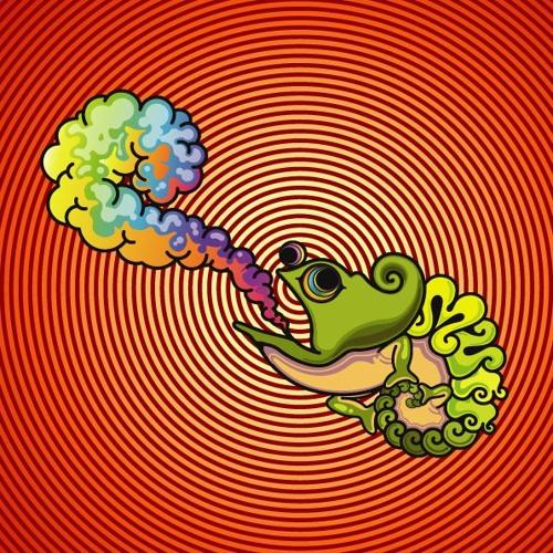 Muff(jam funk band)'s avatar